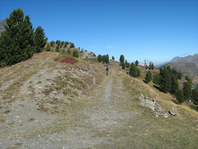 Fournier (Cima) da Bousson, giro per Col Begino e Lago Nero 2010-10-02