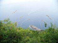 Punta Chiappa dall'alto