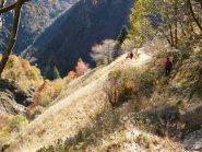 In discesa, poco prima dell'Alpe Oro