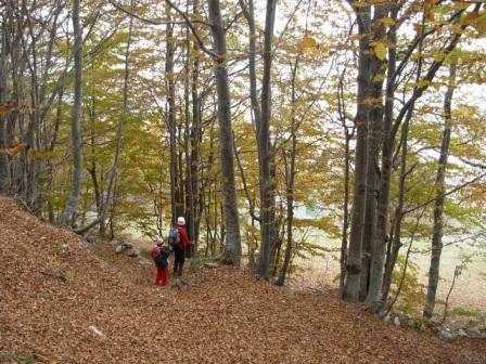 Savona (Rifugio) da Valdinferno 2010-10-23