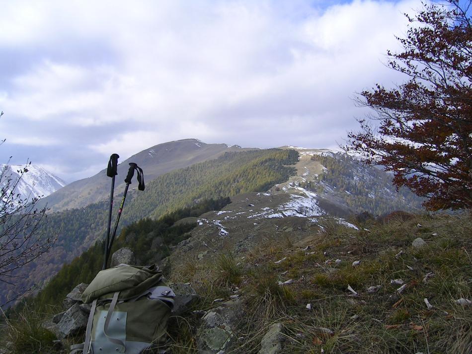 Dalla Testa di Peitagu vs Monte Corso del Cavallo