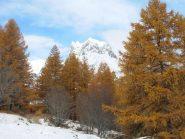 colori d'autunno in valle stretta