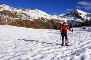 Stelvio nel Vallone di Palasina, a quota 2300 m. (6-11-2010)