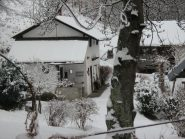 Alpe-Ciolly- Pianero