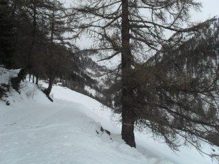 sullo sfondo l'alpe Seyvaz