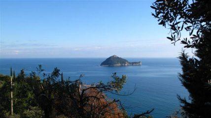 Isola Gallinara e macchia mediterranea