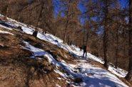 entrando nel Bois du Grand Plan (19-2-2011)