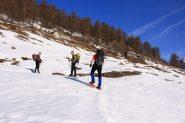 a pochi minuti dal bosco (19-2-2011)