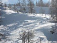 alla ricerca della neve migliore..., che troviamo!