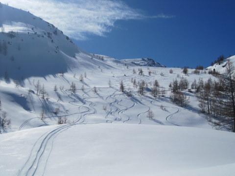 Ampi spazi di neve farinosa