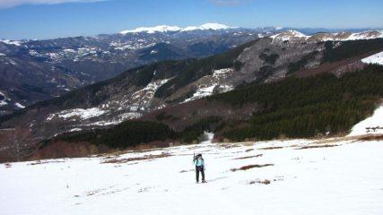 salendo i pendii del versante SO sopra il bosco (18-3-2011)