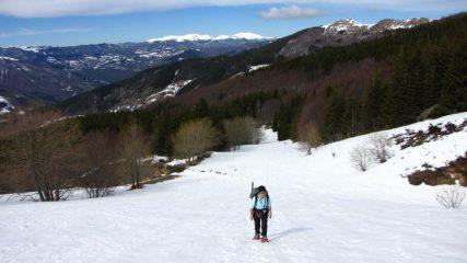 Maria Carla in salita lungo la ex-pista da sci nel bosco iniziale (18-3-2011)