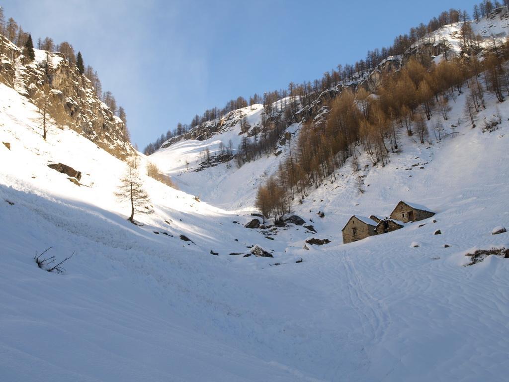 Alpe Cologno