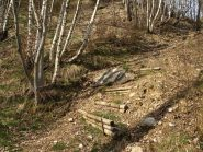 Il sentiero nel bosco ben segnalato
