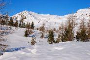 salendo al Colle Lago Bianco, il Monte Ros