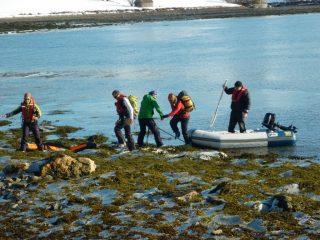 sbarco su alghe ghiacciate