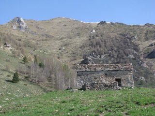 Arrivo all'Alpe Boses, in alto il Bec di Nona