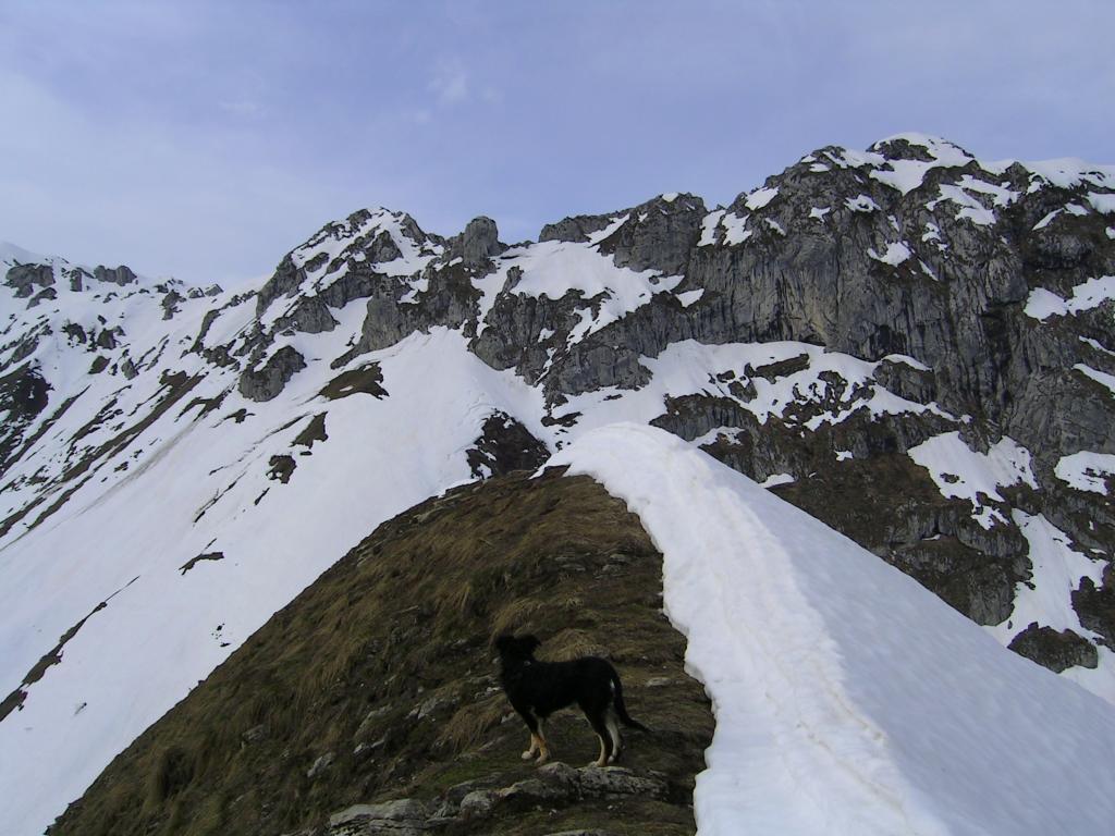 Dal Monte Balur, uno sguardo indietro sulla dorsale
