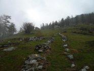 Alpe Prè