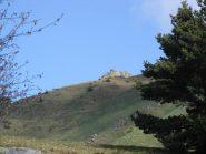 Punta Costafiorita da poco sopra il Colle della Bassa