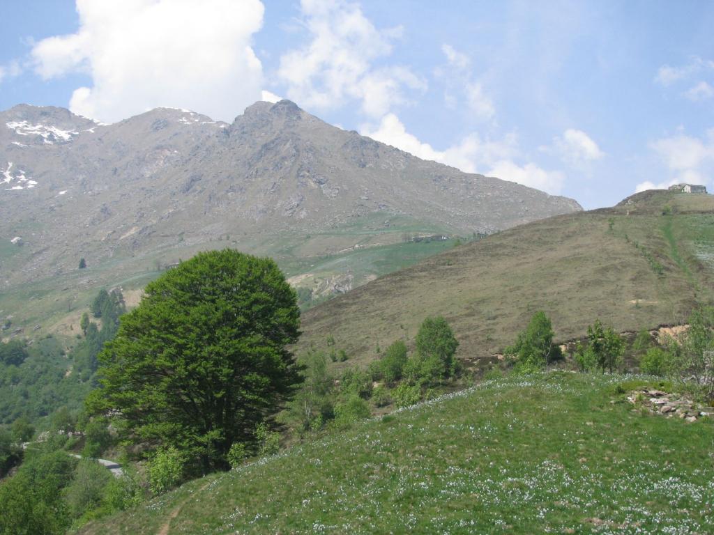 Da Il Colletto, Punta di Rocce Bianche a centro-sinistra