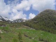 nel vallone d'Arsy ,in vista del primo alpeggio e della cresta ,da sinistra,della punta anonima e del Labiez ,a destra