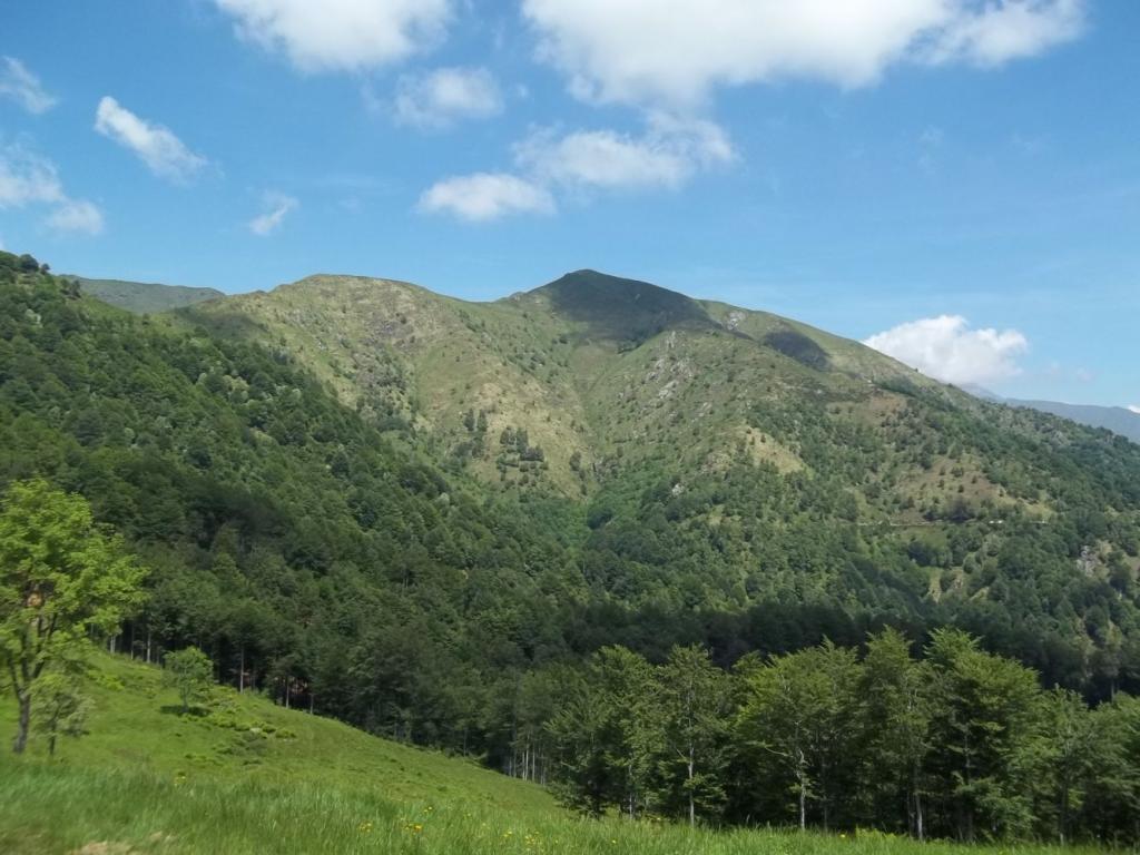 Novesso (Monte) da Quarna di Sotto, anello 2011-05-29