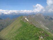 La cresta verso il Dosso della Torta percorsa dal sentiero 420