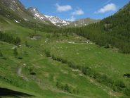 Il vallone percorso, in fondo a dx la Costa Labiez, in primo piano l'Alpe Ars