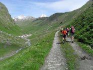 proseguendo nel vallone ,sullo sfondo  la Trelatete e il Glacier
