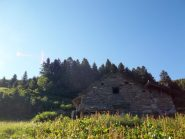 Alpe Selvaccia