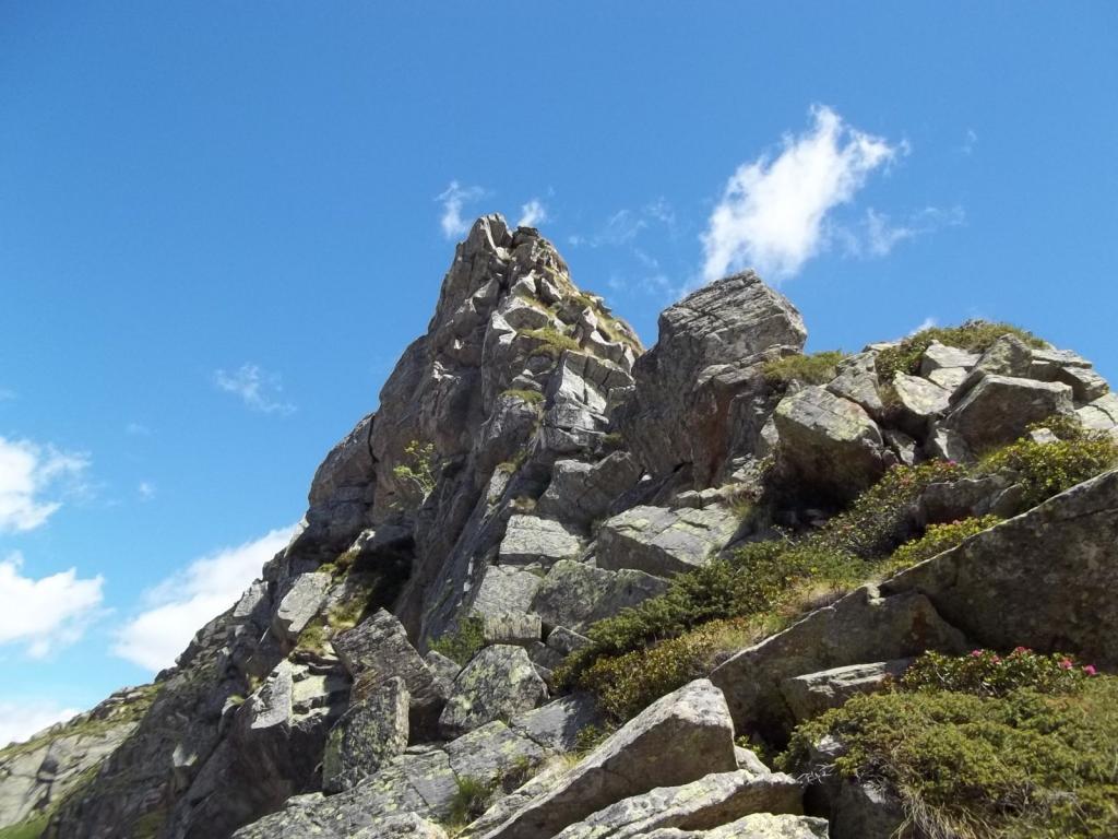 Cambra (Punta) da Rassa, anello di cresta per Monte Bo e Monte Talamone 2011-06-19