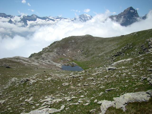 Rous (Punta del) da Martassina, anello per il Colle del Trione 2011-06-21