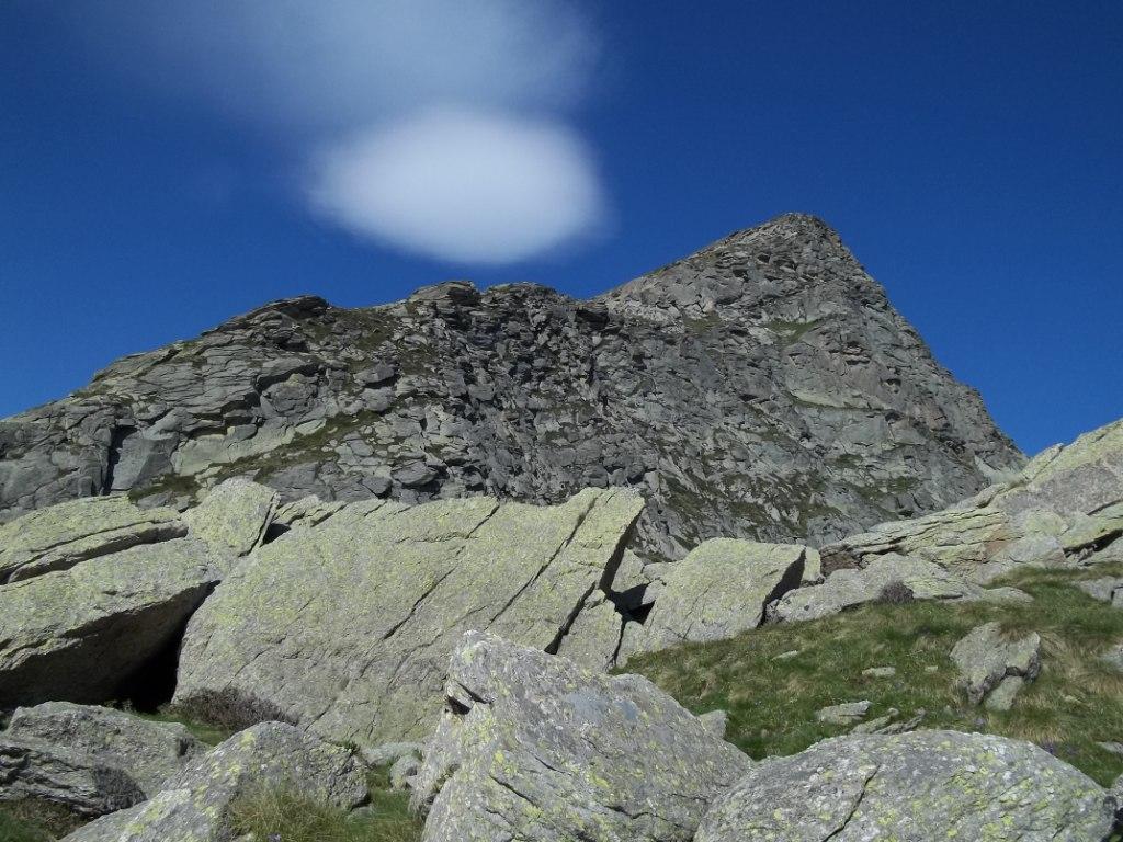 Tovo (Monte) da Carello per il Colle della Forca 2011-06-21