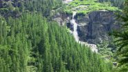 boschi e cscate nel vallone di salita (24-6-2011)