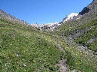 Verso la Roche Ronde