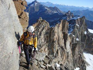Un passaggio in cengia nell'ultimo terzo di cresta; alle spalle la magnifica bastionata di gneiss rosso sopra la quale si snoda la cresta percorsa.