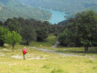 free trek in discesa