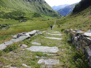 Mulattiera all'Alpe Santanel