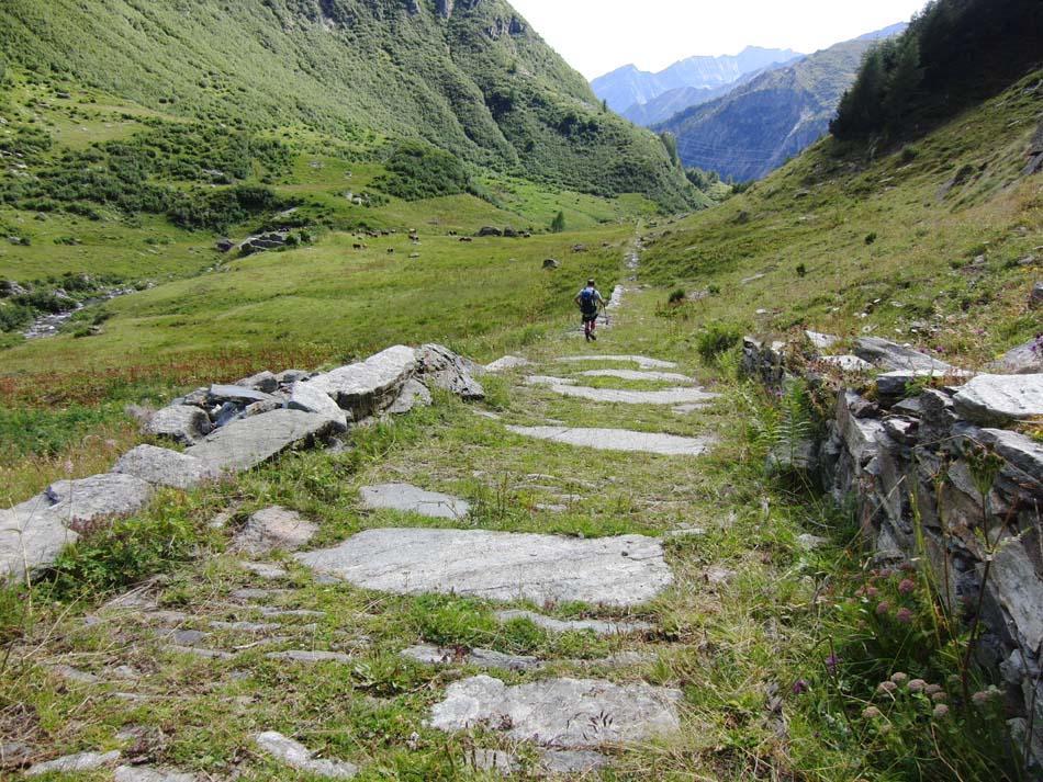Marzo (Monte) per la Cresta Sud dal Colle delle Oche 2011-07-24