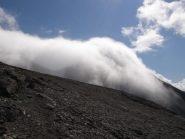 fatua nuvolaglia