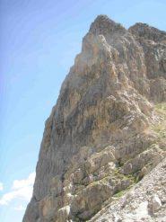 L'imponente torre della Parvo
