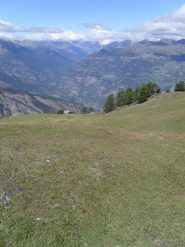 l'ultimo alpeggio  dalla risalita dei dissi erbosi verso la vetta...