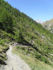 in arrivo all'alpe Grauson Vecchie..