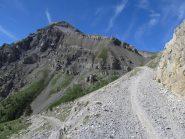 Fino a Rocca Tagliata si pedala