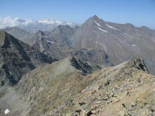 Panorama dalla vetta del M. Glacier
