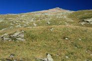 la prima parte del percorso di salita per l'Aiguille de l'Epaisseur..pendii erbosi (28-8-2011)
