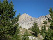 La cima all'uscita del Bosco del Rouas
