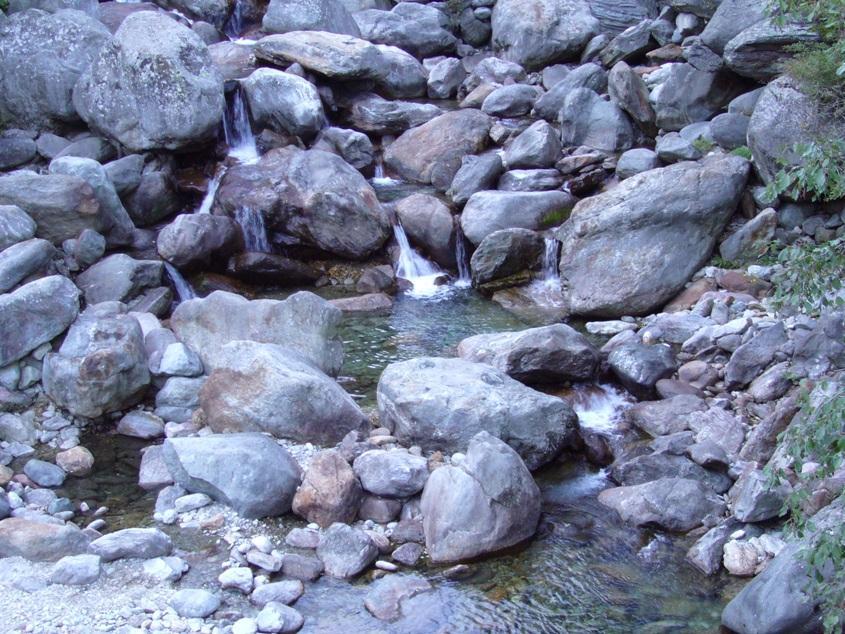 torrente elvo