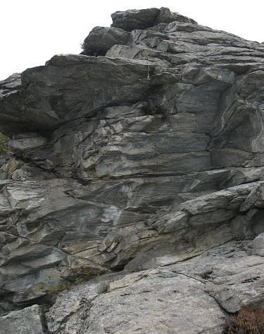 Bracco (Monte) Placconata dei Serpenti - Siamo dei Pesci 2011-10-23